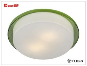 Modern Simple Dimmable 5W LED Wall Light/LED Ceiling Light pictures & photos