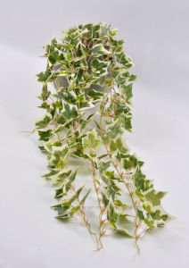Spanish /IVY Leaves in Hanging Cement Pot for Decoration of Garden/Door/Window pictures & photos