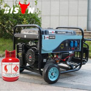 Bison 5kw Portable Natural Gas Generator Prices in Pakistan pictures & photos