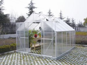 Aluminium Hobby Greenhouse for Garden (W814) pictures & photos