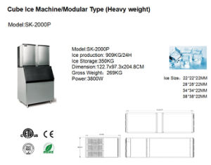 1000kgs Heavy Duty Ice Machine for Food Fresh pictures & photos