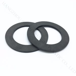 High Quality Plastic Sealing Gasket pictures & photos