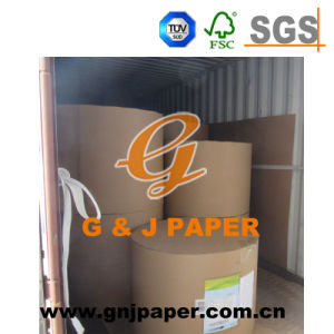 50-120GSM White Double-Sided Offset Paper in Jumbo Reel pictures & photos