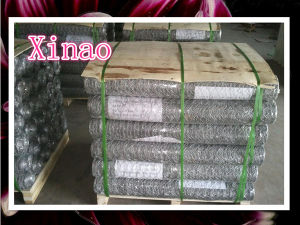 Hot Dipped Galvanized Chicken Wire pictures & photos