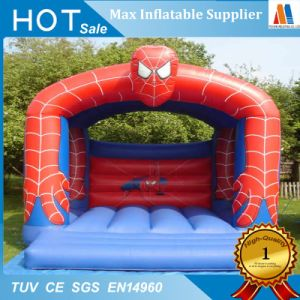 Family Garden Toy Inflatable Small Bouncy Castle pictures & photos