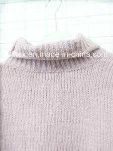 Women ′s Turtleneck Short Garments pictures & photos
