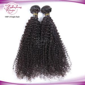 100% Human Hair Kinky Curly Virgin Brazilian Hair Weaving pictures & photos