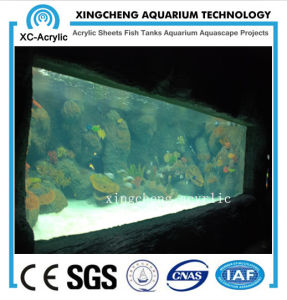 Large Marine Aquarium Acrylic Sea Park Project pictures & photos