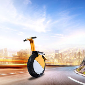 Electric Self Balance Monocycle Scooter One Wheel Electric Unicycle pictures & photos