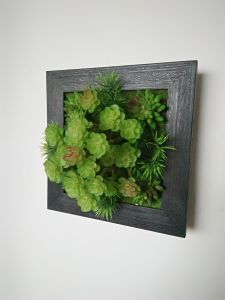 Plastic Photo Frame & Picture Frame for Wall Decoration pictures & photos