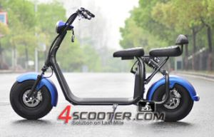 2017 New 1000W/1500W 2 Wheels Citycoco Electric Scooter with Removable Battery for Adult pictures & photos