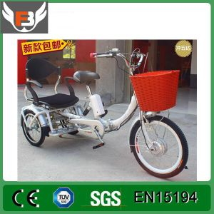 26 Inch 48V Steel Lithium Battery Electro-Tricycle pictures & photos