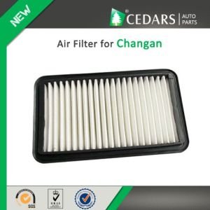 China Auto Parts Quality Supplier Air Filter for Changan pictures & photos