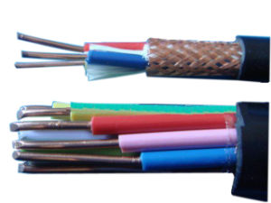 450/750V 5 Cores 0.75mm2 1mm2 2.5mm2 4mm2 6mm2 PVC 4 Core Control Cable pictures & photos