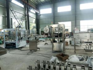 Full Automatic Rotary Bottle Water Rinsing Washing Filling and Capping Machine