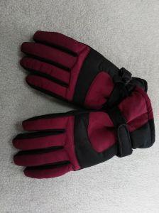 Adult Ski Glove/Adult Winter Glove/Winter Bike Glove/Moto Bike Glove/Detox Glove/Eco Finish Glove/Oekotex Glove/I-Touch Screen Glove/Waterproof Glove pictures & photos