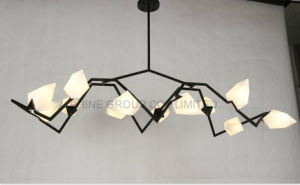 Great European Modern Top Quality Bedroom Pendant Light for Reading pictures & photos