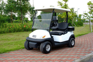 Ce Approved Battery Operated 2 Seater Mini Golf Cart pictures & photos