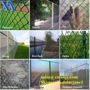 Galvanized Chain Link Fencing (XA-CLF7) pictures & photos