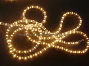 Rope Light (2wire White) pictures & photos
