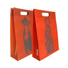 Medium Eco-Friendly Non-Woven Bag pictures & photos
