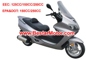 250CC Scooter (250t-22)