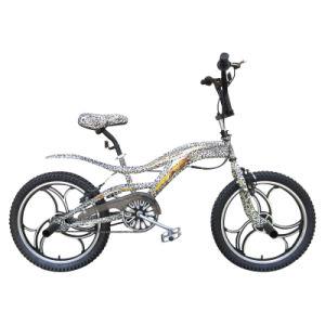 """20"""" Steel Frame Alloy OPC Rim Free Style Bike"""