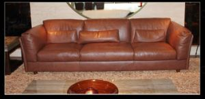 Genuine Leather Sofa (HD-249)
