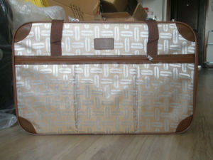 Skd Soft Luggage (S-12D) pictures & photos