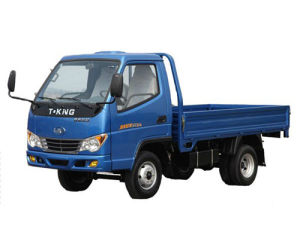 China Hot Product! T King Brand 1 Ton Light Cargo Truck pictures & photos