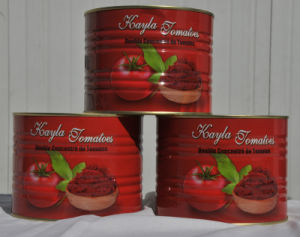 28%-30% Canned Tomato Paste 15 pictures & photos