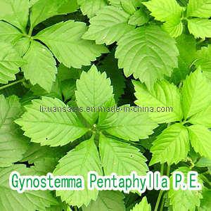 Gynostemma Extract (Gypenosides)