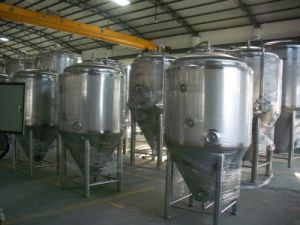 10hl Micro Conical Fermenters (MTB)