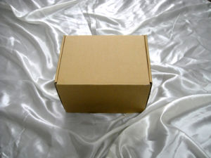 Hot Sell Carton / Corrugated Box pictures & photos