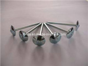 Factory: Roofing Nails with Umbrella Head pictures & photos