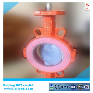 Ductile Iron PTFE Lining Wafer Butterfly Valve with Full PTFE Bct-F4bfv-10 pictures & photos