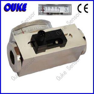 Pointer Display Type Magnetic Piston Flow Switch pictures & photos