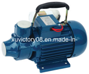 Cast Iron Household Centrifugal Water Pump (IDB-35) pictures & photos