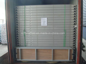 """19"""" Scaffold Aluminum-Plywood Plank pictures & photos"""