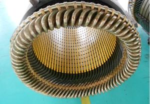 Stator Coil pictures & photos