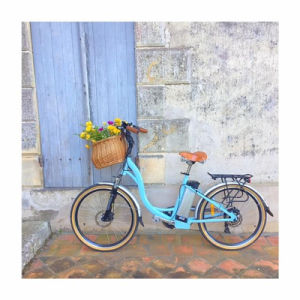 36V/13.5ah Lithium Battery Electric Bike with TUV pictures & photos