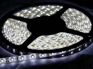 3528 108LED/M 12V White Custom LED Strip pictures & photos
