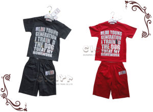 Boy′s 2PCS Knitting Set (S10130)