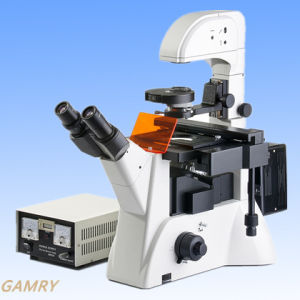 Professional High Quality Inverted Fluorescence Microscope (IFM-2) pictures & photos