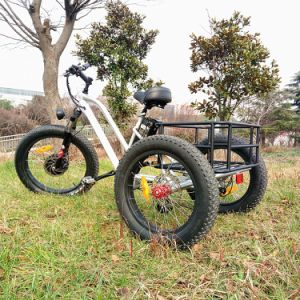 Fat Tire Electric Tricycle with Lithium Battery (RSEB-706) pictures & photos