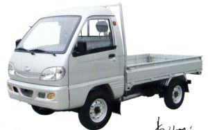 T-King Mini-Truck (ZB1011AODA1)
