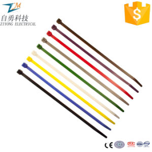 Full Sizes Colorful Self-Locking Nylon Cable Ties pictures & photos