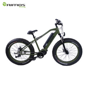 Unfolding Portable Fat Tire Electric Bicycle with MID Drive Motor pictures & photos