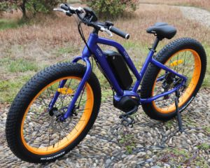 8 Fun Fat Tire Electric Bicycle From China pictures & photos