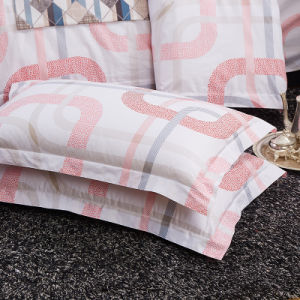 China Wholesale Luxury Hotel Printed Quilt Cover pictures & photos
